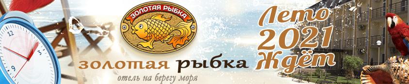 Отель Золотая рыбка - сезон Лето 2021
